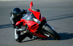 Photo of a 2006 Benelli Tornado Tre RS