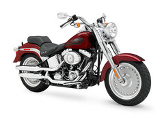 Photo of a 2008 Harley-Davidson FLSTF Fat Boy