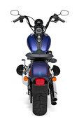 2010 Harley-Davidson FLSTSB Cross Bones
