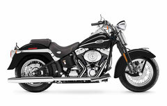 Photo of a 2005 Harley-Davidson FLSTSC Softail Springer Classic