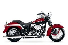 Photo of a 2006 Harley-Davidson FLSTSC Softail Springer Classic