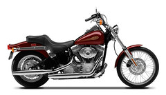 Photo of a 2001 Harley-Davidson FXST Softail Standard