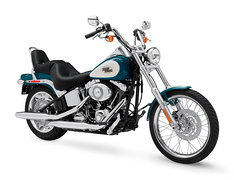 Photo of a 2009 Harley-Davidson FXST Softail Standard