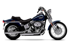 Photo of a 2003 Harley-Davidson FXSTS Springer Softail
