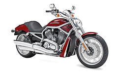 Photo of a 2009 Harley-Davidson VRSCAW V-Rod