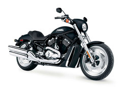 Photo of a 2006 Harley-Davidson VRSCD Night Rod