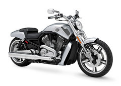 Photo of a 2009 Harley-Davidson VRSCF V-Rod Muscle