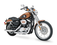 Photo of a 2004 Harley-Davidson XL1200C Sportster Custom