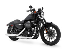 Photo of a 2009 Harley-Davidson XL883 Sportster