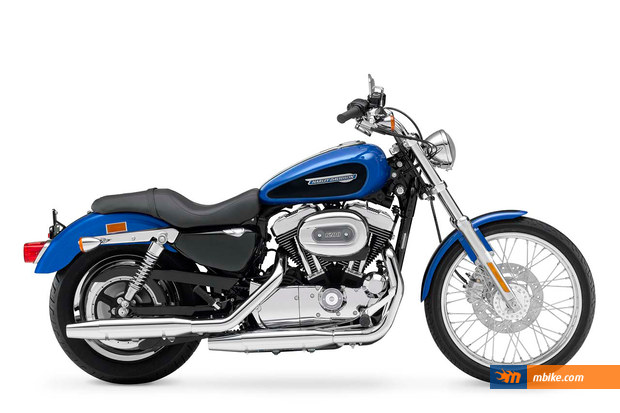 2002 Harley-Davidson XL883C Sportster Custom