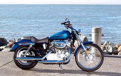 2005 Harley-Davidson XL883C Sportster Custom