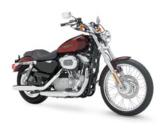 Photo of a 2008 Harley-Davidson XL883C Sportster Custom