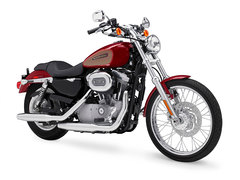 Photo of a 2009 Harley-Davidson XL883C Sportster Custom