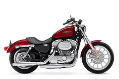 Photo of a 2005 Harley-Davidson XL883L Sportster Low