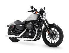 Photo of a 2010 Harley-Davidson XL883N Sportster Iron