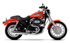 Photo of a 2003 Harley-Davidson XL883R Sportster