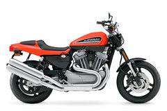 Photo of a 2010 Harley-Davidson XR1200 Sportster