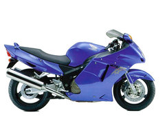 Photo of a 1999 Honda CBR 1100 XX