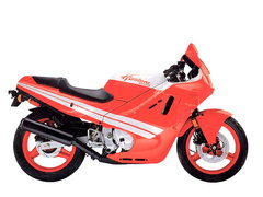 Photo of a 1989 Honda CBR 600 F
