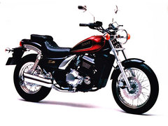 Photo of a 1988 Kawasaki EL 250