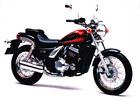 1996 Kawasaki EL 250