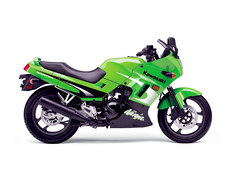 Photo of a 2003 Kawasaki Ninja 250 R