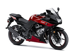 Photo of a 2010 Kawasaki Ninja 250 R