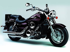 Photo of a 2006 Kawasaki VN 1600 Classic