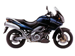 Photo of a 2002 Suzuki DL 1000