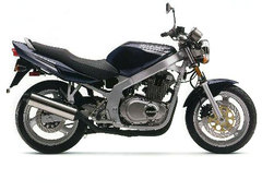 Photo of a 2001 Suzuki GS 500 E