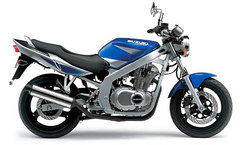 Photo of a 2003 Suzuki GS 500 E