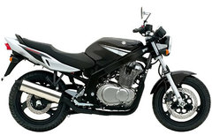 Photo of a 2006 Suzuki GS 500 E