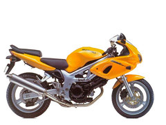 Photo of a 2000 Suzuki SV 650 S