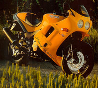 Photo of a 1996 Triumph Daytona 900 Super III