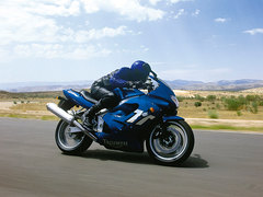 Photo of a 2002 Triumph TT 600