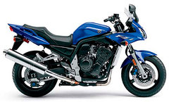 Photo of a 2005 Yamaha FZ 1N