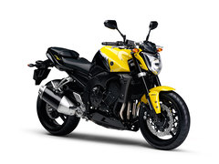 Photo of a 2009 Yamaha FZ 1N ABS