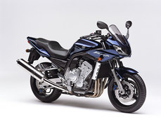 Photo of a 2005 Yamaha FZS 1000
