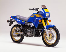 Photo of a 1990 Yamaha TDR 250