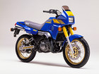 1988 Yamaha TDR 250