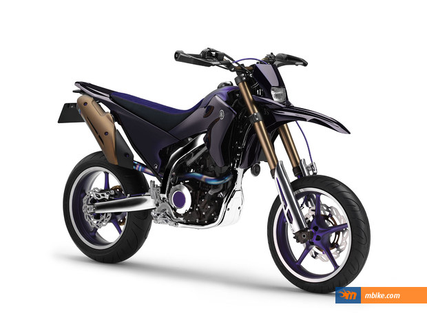 2007 Yamaha WR 250 X Special Picture - Mbike.com