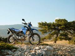 2010 Yamaha XT 660 R
