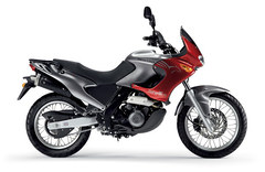 Photo of a 2008 Aprilia Pegaso 650
