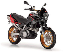 Photo of a 2010 Aprilia Pegaso 650 Factory