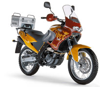 Photo of a 2003 Aprilia Pegaso Tibet