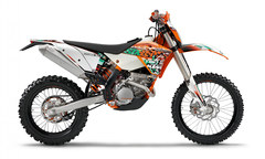 Photo of a 2011 KTM 250 EXC-F SixDays