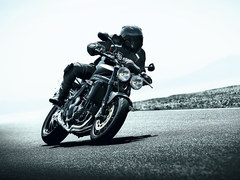 Photo of a 2010 Triumph Speed Triple