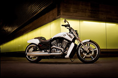 Photo of a 2011 Harley-Davidson VRSCF V-Rod Muscle
