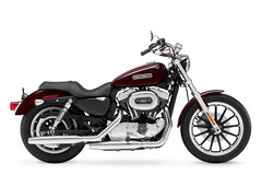 Photo of a 2011 Harley-Davidson XL1200L Sportster Low