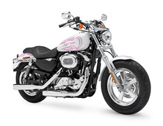 2011 Harley-Davidson XL1200C Sportster Custom